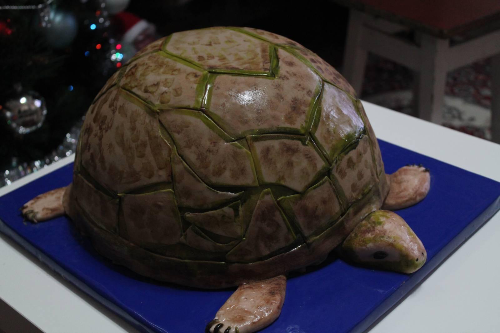 Рецепт торта черепаха в домашних условиях пошагово